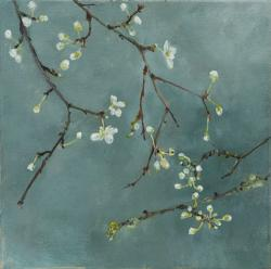 Hybrid Gallery Linda Felcey Promise of a Plum