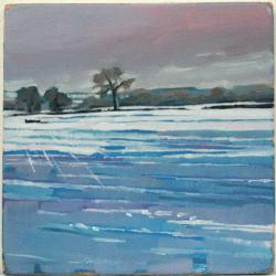 Hybrid Gallery Jane French Snow Field