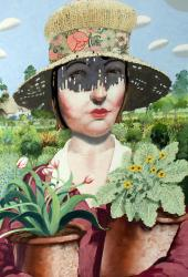 Hybrid Gallery Richard Adams The Gardener