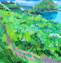 Hybrid Gallery Mark Rochester Wild Summer Garden on Cliff Top