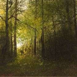 Hybrid Gallery John Thornton A Glimpse of Light at the Edge of the Wood