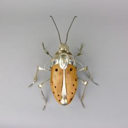 Hybrid Gallery Dean Patman Shield Bug
