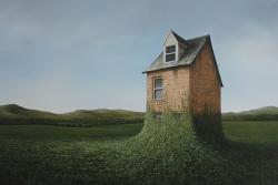 Hybrid Gallery Lee Madgwick The Veil